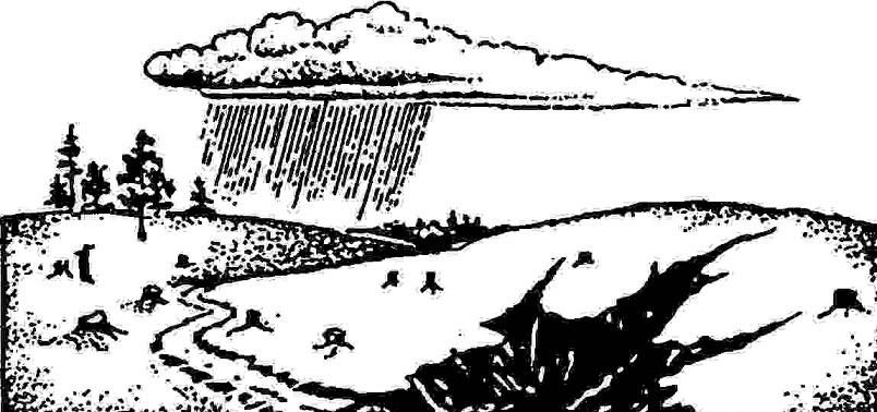 задерживающие водные
